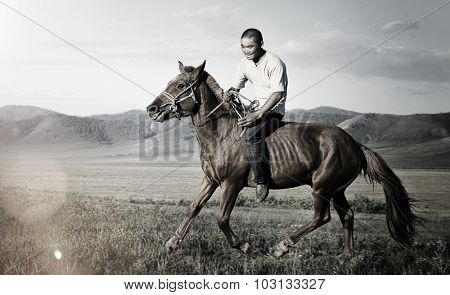 Riding Horse Equestrian Field Nature Mountain Concept