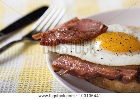Close-up Of Fried Egg