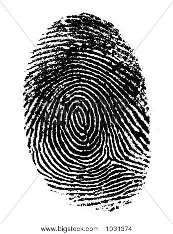 Single Black Fingerprint 2