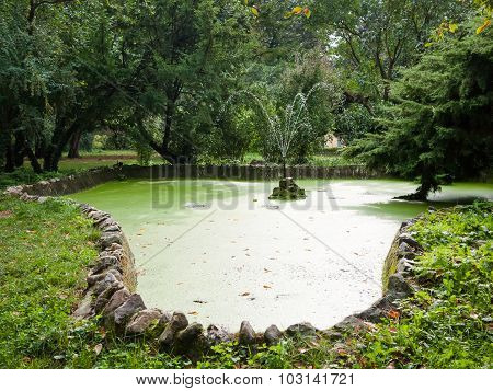 Park With Water Fountain Surrounded By Ornamental Trees