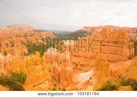 Bryce Canyon After The Summer Rains