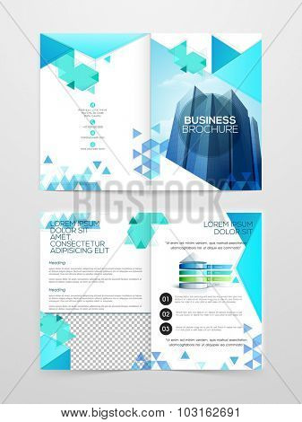 Creative abstract design decorated professional Two page Business Brochure, Flyer, Banner or Template design.