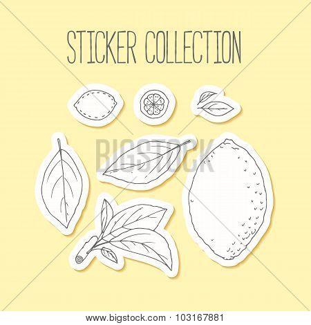 Lemonade Sticker Collection With Hand Drawn Lemon, Leaves And Branch