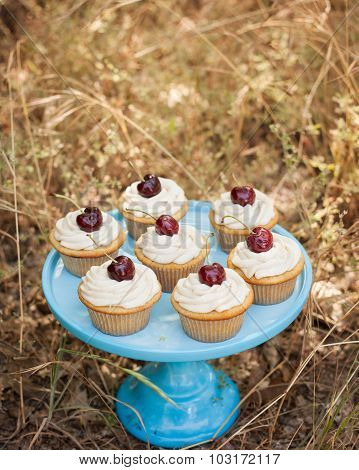 blue cake stand with cupcakes