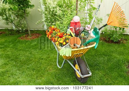 Wheelbarrow with Gardening tools in the garden.