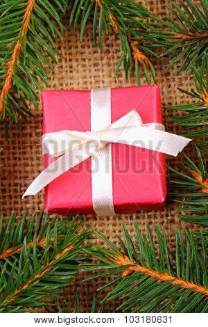 Wrapped Gift For Christmas Or Other Celebration And Spruce Branches
