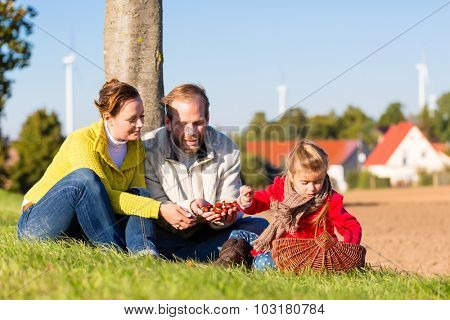 Family with mother, father and daughter having family trip on bicycle or cycle in park or country collecting chestnuts