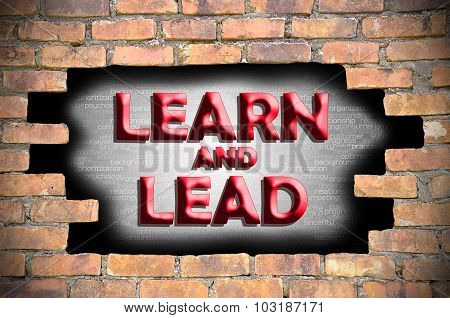 Learn And Lead In The Hole Of Brick Wall