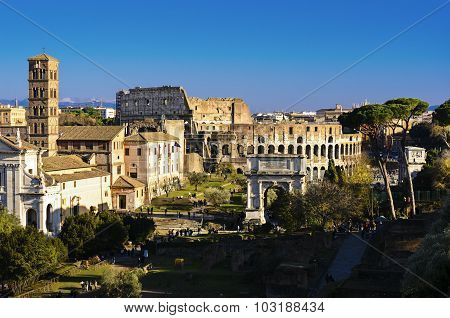 Coliseum View From Palatine Hill, Roma, Italy