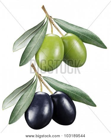 Green and black olives with leaves on a white background. File contains clipping paths.