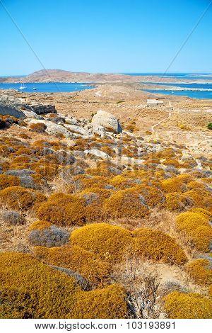 Sea In Delos Greece The Historycal Acropolis And Old Ruin Site