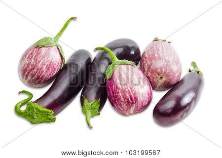Several Eggplant On A Light Background