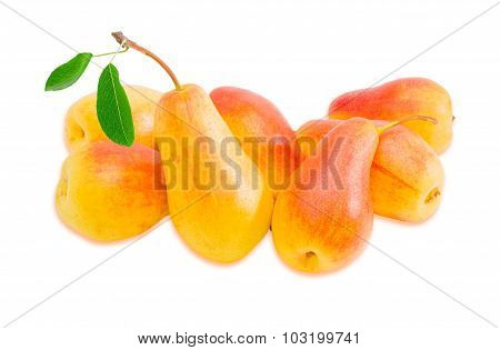 Several European Pears On A Light Background