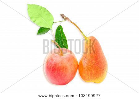 European Pear And Red Apple On A Light Background
