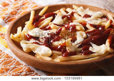 Traditional Canadian Fast Food Poutine With Sauce And Cheese
