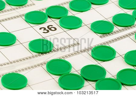 lotto cards and green chips and open the number 36