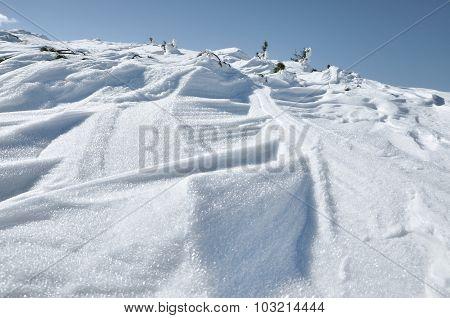 New Snow Fall, Snow Ground