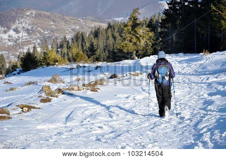 Woman Trekking In The Mountains At Winter
