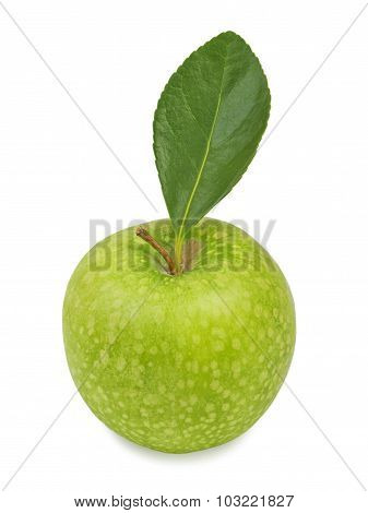 Green apple with leaf. Isolated