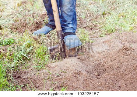 Closeup Photo Of Man Digging Soil At Garden