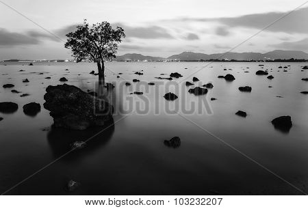 High Dynamic Range Technique In Twilight, Black And White Tone