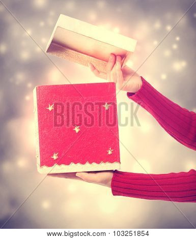 Woman Holding A Big Red Present Box