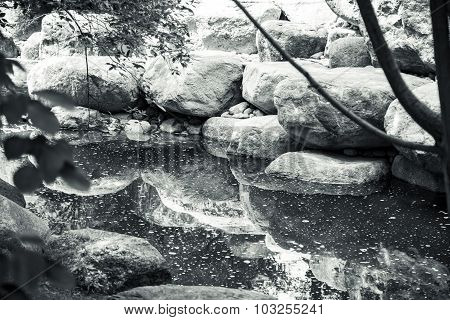 Black And White Shot Of A Silent Creek With Big Rocks
