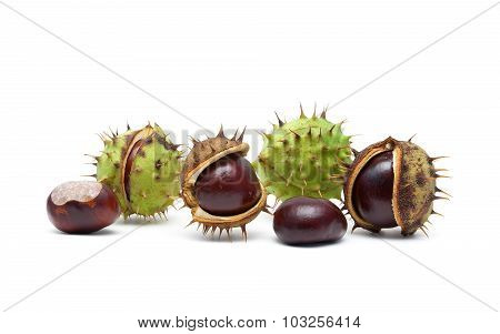 Ripe Chestnuts On A White Background