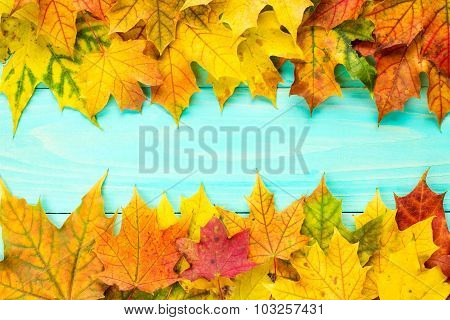 Autumn Fall Background With Leaves Border
