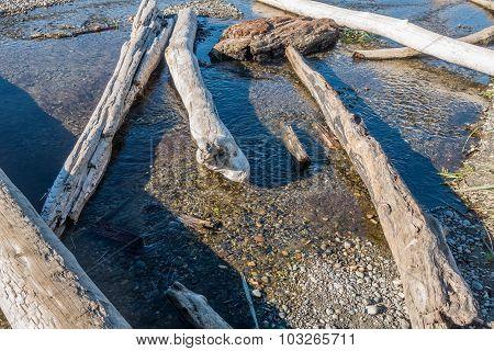Seahurst Dirftwood Logs 3