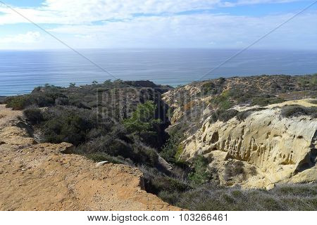 West Coast Pacific Ocean