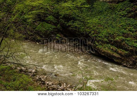 Mountain River Surrounded By Green Vegetation