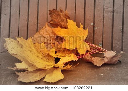 Yellow Autumn Maple Leaves Lying On Bench