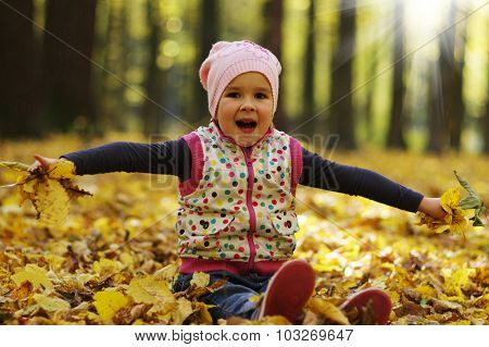 Little girl in the autumn forest on a sunny day