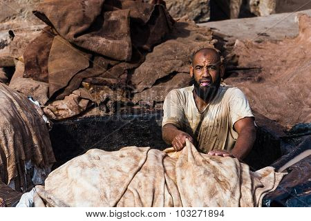 Marrakech, Morocco - Circa September 2015 - A Hard Working Man In A Tannery In Marrakech