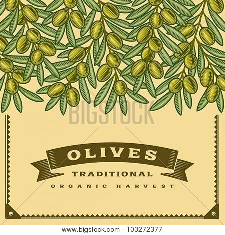 Retro olive harvest card. Editable vector illustration with clipping mask.