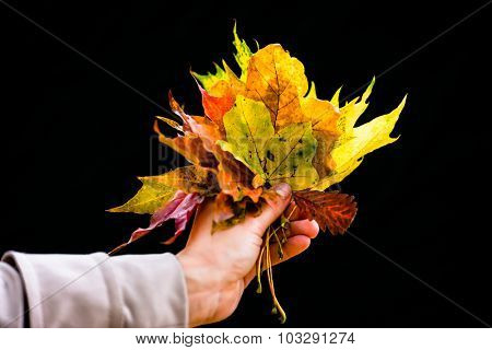 Woman in Autumn or fall with colorful leaves against dark background