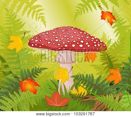 Illustration of amanita on autumn background