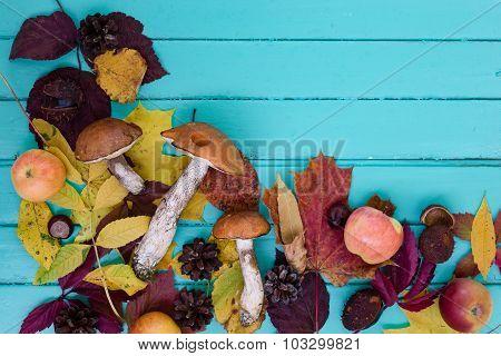 Mushrooms, apples and leaves