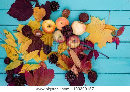 Autumn leaves and apples