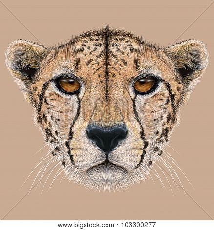 Illustrative Portrait of a Cheetah