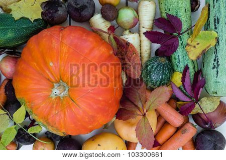 Vegetables with autumn leaves