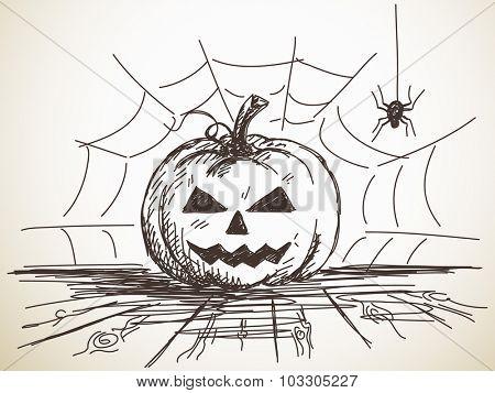 Halloween Sketch of Pumpkin on background of Spider net, Hand drawn illustration
