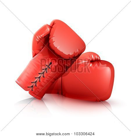 Boxing Gloves Realistic