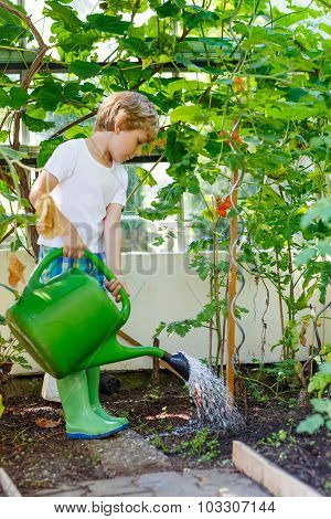 Little Kid Boy Watering Plants In Greenhouse In Summer