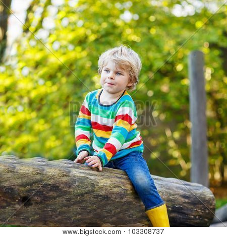 Little Kid Boy  Having Fun On Autumn Playground