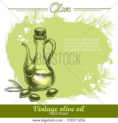 Vintage olive oil bottle with olives. Hand drawn.