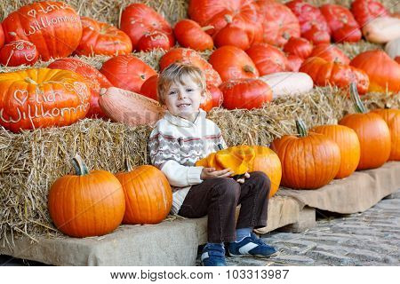Little Kid Sitting With Lots Of Pumpkins On Patch Farm
