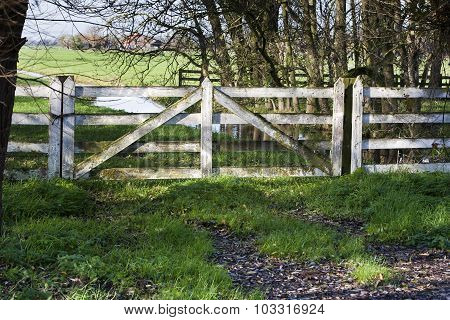 Pasture Fence Gate