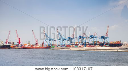 Port Of Naples, Cityscape With Container Cranes
